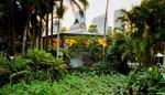 Botanic-Venue